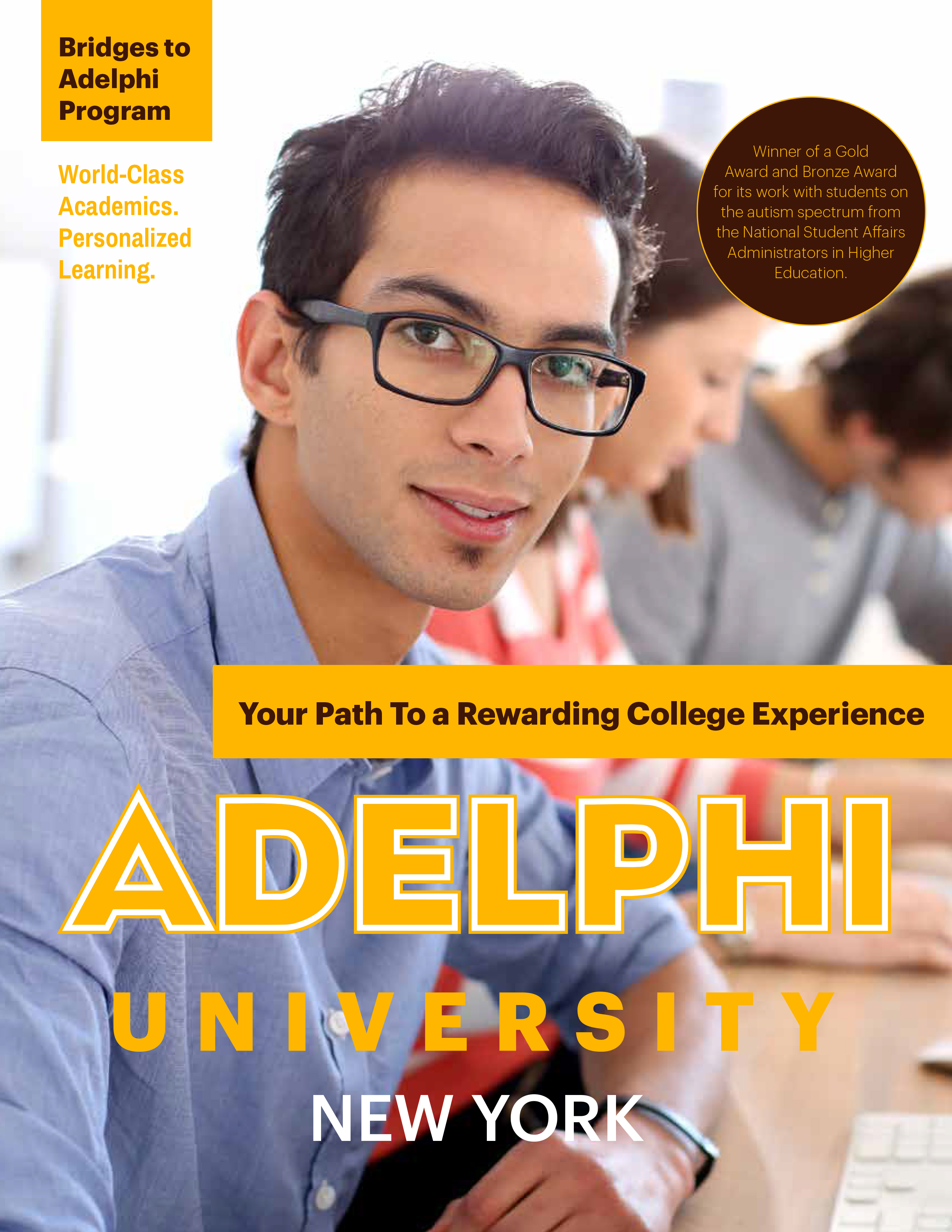 Adelphi Bridges Program